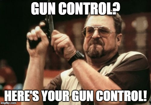 Am I The Only One Around Here Meme | GUN CONTROL? HERE'S YOUR GUN CONTROL! | image tagged in memes,am i the only one around here | made w/ Imgflip meme maker