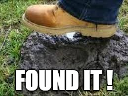 FOUND IT ! | made w/ Imgflip meme maker
