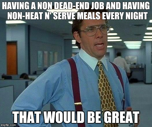 That Would Be Great Meme | HAVING A NON DEAD-END JOB AND HAVING  NON-HEAT N' SERVE MEALS EVERY NIGHT THAT WOULD BE GREAT | image tagged in memes,that would be great | made w/ Imgflip meme maker