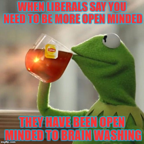 But Thats None Of My Business Meme | WHEN LIBERALS SAY YOU NEED TO BE MORE OPEN MINDED THEY HAVE BEEN OPEN MINDED TO BRAIN WASHING | image tagged in memes,but thats none of my business,kermit the frog | made w/ Imgflip meme maker