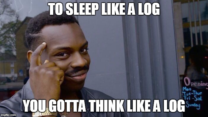 Roll Safe Think About It Meme | TO SLEEP LIKE A LOG YOU GOTTA THINK LIKE A LOG | image tagged in roll safe think about it | made w/ Imgflip meme maker