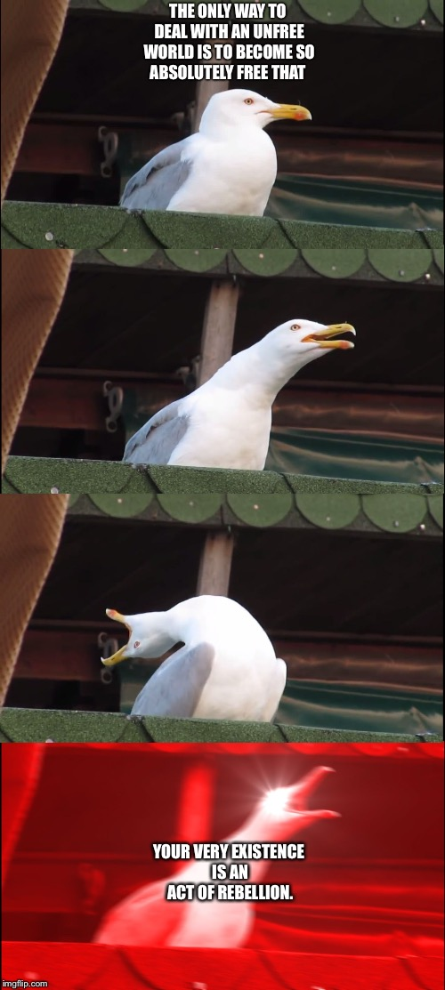 Inhaling Seagull Meme | THE ONLY WAY TO DEAL WITH AN UNFREE WORLD IS TO BECOME SO ABSOLUTELY FREE THAT YOUR VERY EXISTENCE IS AN ACT OF REBELLION. | image tagged in inhaling seagull | made w/ Imgflip meme maker