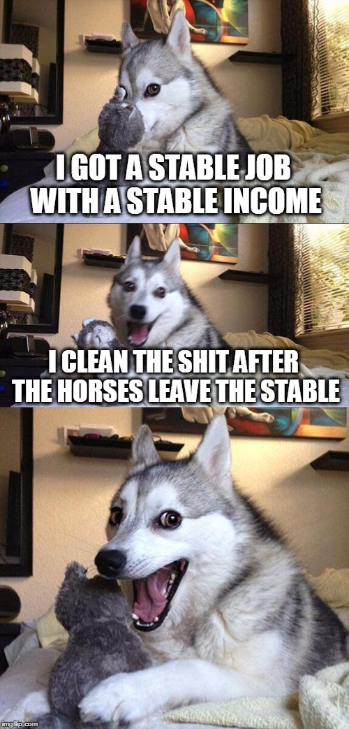 Well, someone had to do it.. the meme of course.  | I GOT A STABLE JOB WITH A STABLE INCOME I CLEAN THE SHIT AFTER THE HORSES LEAVE THE STABLE | image tagged in memes,bad pun dog | made w/ Imgflip meme maker