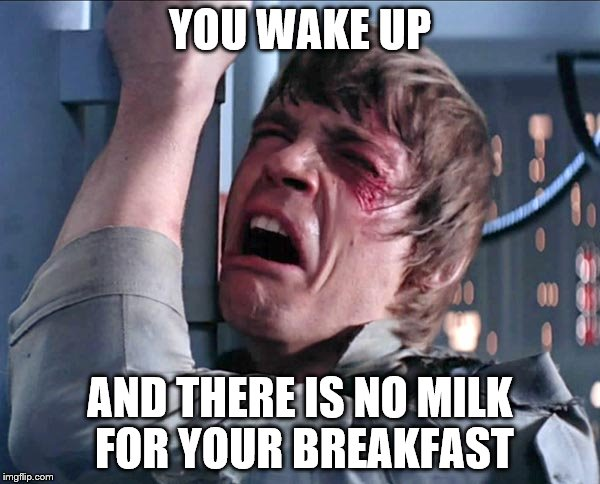 Luke NOooooo | YOU WAKE UP AND THERE IS NO MILK FOR YOUR BREAKFAST | image tagged in luke noooooo | made w/ Imgflip meme maker