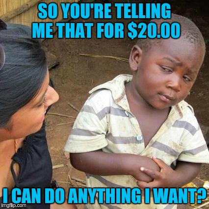Third World Skeptical Kid Meme | SO YOU'RE TELLING ME THAT FOR $20.00 I CAN DO ANYTHING I WANT? | image tagged in memes,third world skeptical kid | made w/ Imgflip meme maker