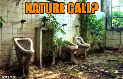 NATURE CALL? | image tagged in nature call,transgender bathroom,funny memes,nature,green | made w/ Imgflip meme maker