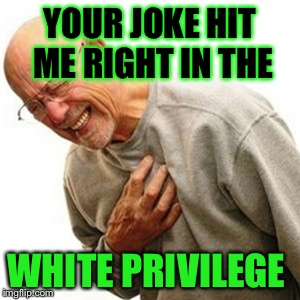 Right in the what! | YOUR JOKE HIT ME RIGHT IN THE WHITE PRIVILEGE | image tagged in memes,right in the childhood | made w/ Imgflip meme maker