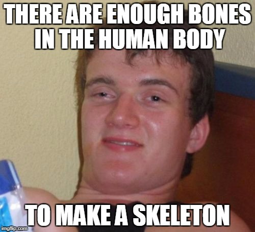 WhOa WhO kNeW? | THERE ARE ENOUGH BONES IN THE HUMAN BODY TO MAKE A SKELETON | image tagged in memes,10 guy,trhtimmy,halloween | made w/ Imgflip meme maker