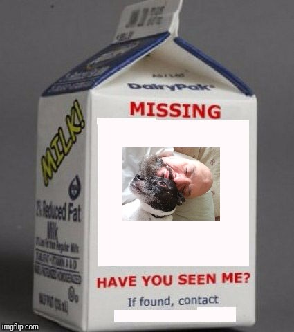 Milk carton | image tagged in milk carton | made w/ Imgflip meme maker