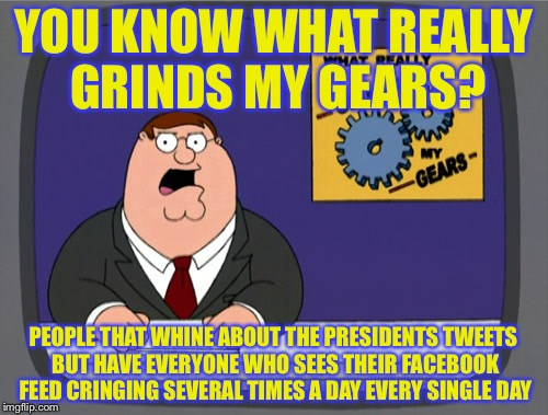 Peter Griffin News Meme | YOU KNOW WHAT REALLY GRINDS MY GEARS? PEOPLE THAT WHINE ABOUT THE PRESIDENTS TWEETS BUT HAVE EVERYONE WHO SEES THEIR FACEBOOK FEED CRINGING  | image tagged in memes,peter griffin news | made w/ Imgflip meme maker