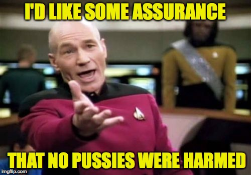 Picard Wtf Meme | I'D LIKE SOME ASSURANCE THAT NO PUSSIES WERE HARMED | image tagged in memes,picard wtf | made w/ Imgflip meme maker