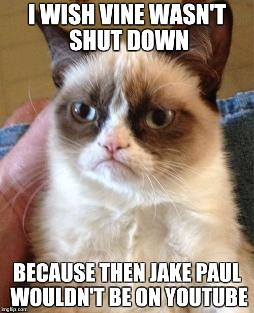The reason Jake Paul has 9000+ subscribers is because they move from Vine to YouTube. | I WISH VINE WASN'T SHUT DOWN BECAUSE THEN JAKE PAUL WOULDN'T BE ON YOUTUBE | image tagged in memes,grumpy cat,jake paul,vine,youtube | made w/ Imgflip meme maker