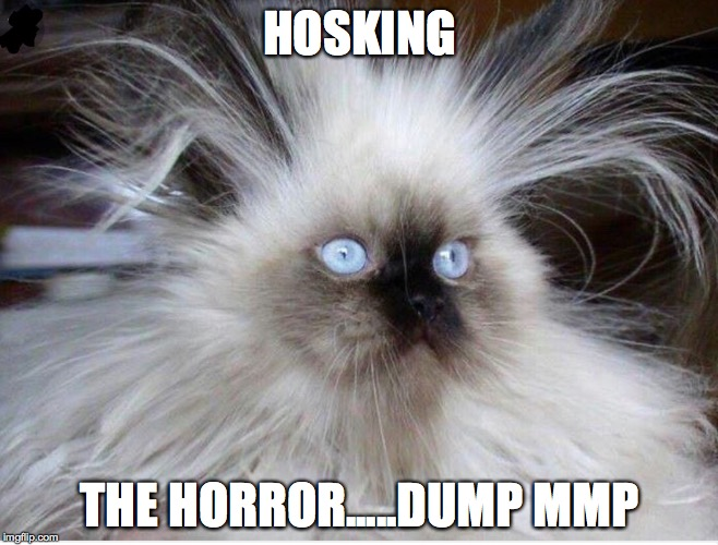HOSKING THE HORROR.....DUMP MMP | image tagged in frazzled over politics | made w/ Imgflip meme maker