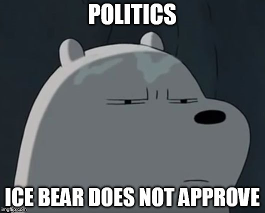 Ice Bear Does Not Approve | POLITICS ICE BEAR DOES NOT APPROVE | image tagged in ice bear does not approve | made w/ Imgflip meme maker