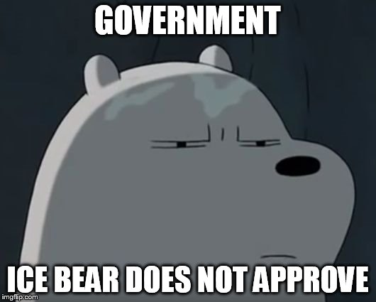 Ice Bear Does Not Approve | GOVERNMENT ICE BEAR DOES NOT APPROVE | image tagged in ice bear does not approve | made w/ Imgflip meme maker