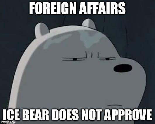 Ice Bear Does Not Approve | FOREIGN AFFAIRS ICE BEAR DOES NOT APPROVE | image tagged in ice bear does not approve | made w/ Imgflip meme maker