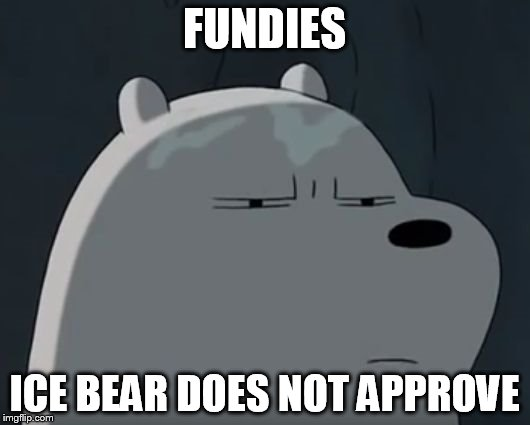 Ice Bear Does Not Approve | FUNDIES ICE BEAR DOES NOT APPROVE | image tagged in ice bear does not approve | made w/ Imgflip meme maker