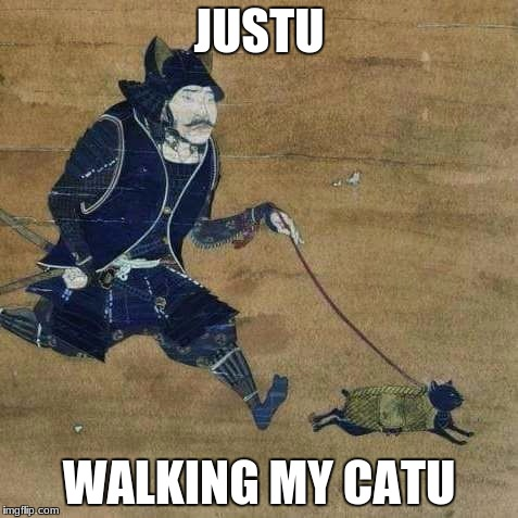 a samurai and his catu | JUSTU WALKING MY CATU | image tagged in justu walking my catu,memes,funny,cats,samurai | made w/ Imgflip meme maker