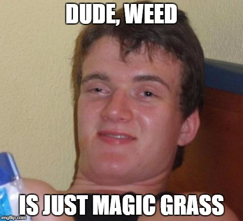 10 Guy Meme | DUDE, WEED IS JUST MAGIC GRASS | image tagged in memes,10 guy | made w/ Imgflip meme maker