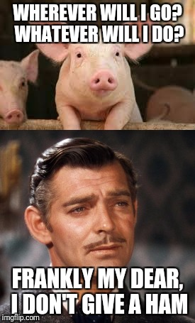 WHEREVER WILL I GO? WHATEVER WILL I DO? FRANKLY MY DEAR, I DON'T GIVE A HAM | image tagged in rhett butler | made w/ Imgflip meme maker