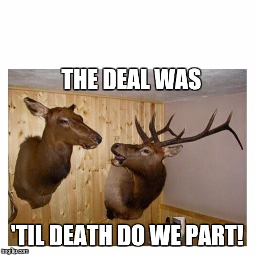 Deers Couple | THE DEAL WAS 'TIL DEATH DO WE PART! | image tagged in deers couple | made w/ Imgflip meme maker