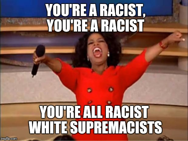 Oprah You Get A Meme | YOU'RE A RACIST, YOU'RE A RACIST YOU'RE ALL RACIST WHITE SUPREMACISTS | image tagged in memes,oprah you get a | made w/ Imgflip meme maker