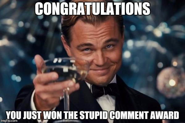 Leonardo Dicaprio Cheers Meme | CONGRATULATIONS YOU JUST WON THE STUPID COMMENT AWARD | image tagged in memes,leonardo dicaprio cheers | made w/ Imgflip meme maker