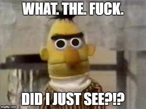 WHAT. THE. F**K. DID I JUST SEE?!? | image tagged in bert,wtf | made w/ Imgflip meme maker