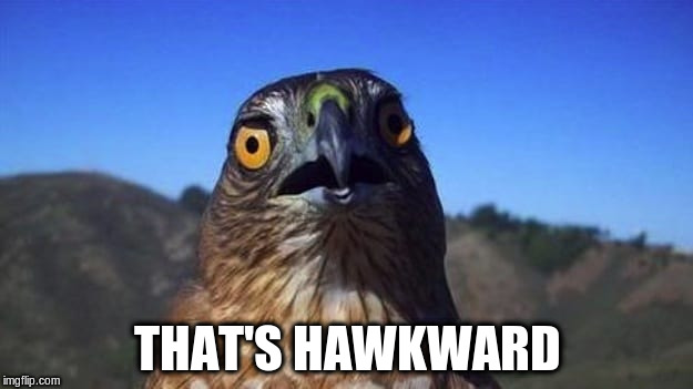 THAT'S HAWKWARD | made w/ Imgflip meme maker