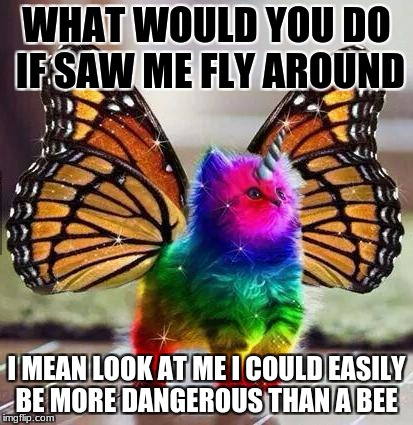 Rainbow unicorn butterfly kitten | WHAT WOULD YOU DO IF SAW ME FLY AROUND I MEAN LOOK AT ME I COULD EASILY BE MORE DANGEROUS THAN A BEE | image tagged in rainbow unicorn butterfly kitten | made w/ Imgflip meme maker