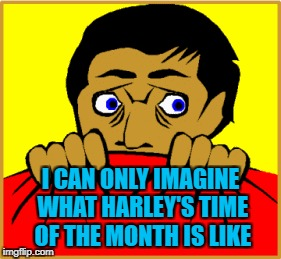 I CAN ONLY IMAGINE WHAT HARLEY'S TIME OF THE MONTH IS LIKE | made w/ Imgflip meme maker