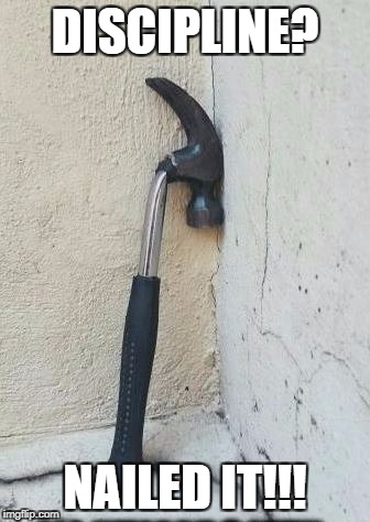 Bad Hammers need to be punished. | DISCIPLINE? NAILED IT!!! | image tagged in bent hammer,hammer,tools,memes,funny memes | made w/ Imgflip meme maker