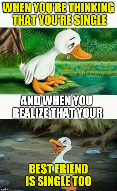 Sad Happy Duck | WHEN YOU'RE THINKING THAT YOU'RE SINGLE BEST FRIEND IS SINGLE TOO AND WHEN YOU REALIZE THAT YOUR | image tagged in sad happy duck | made w/ Imgflip meme maker