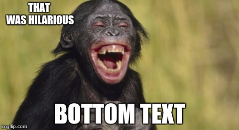 Laughing monkey | THAT WAS HILARIOUS BOTTOM TEXT | image tagged in laughing monkey | made w/ Imgflip meme maker