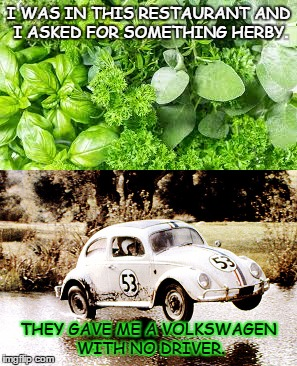 Herbs | I WAS IN THIS RESTAURANT AND I ASKED FOR SOMETHING HERBY. THEY GAVE ME A VOLKSWAGEN WITH NO DRIVER. | image tagged in herbie | made w/ Imgflip meme maker