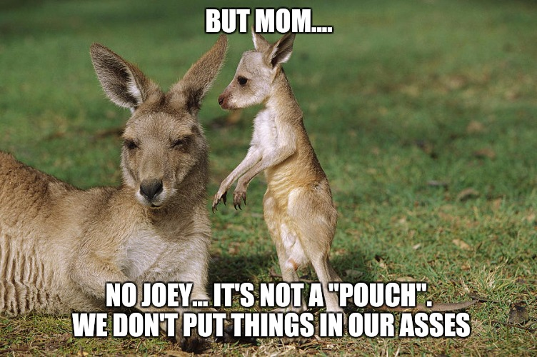 "Anal retention | BUT MOM.... NO JOEY... IT'S NOT A ""POUCH"". WE DON'T PUT THINGS IN OUR ASSES 