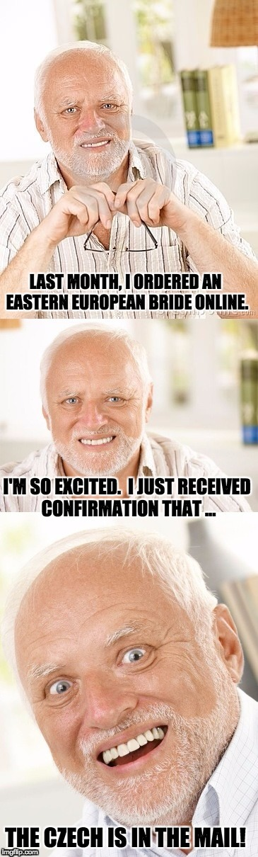 Hide the pun Harold | LAST MONTH, I ORDERED AN EASTERN EUROPEAN BRIDE ONLINE. I'M SO EXCITED.  I JUST RECEIVED CONFIRMATION THAT ... THE CZECH IS IN THE MAIL! | image tagged in hide the pun harold | made w/ Imgflip meme maker