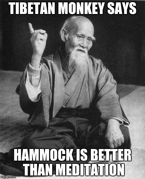 Confucius say | TIBETAN MONKEY SAYS HAMMOCK IS BETTER THAN MEDITATION | image tagged in confucius say | made w/ Imgflip meme maker