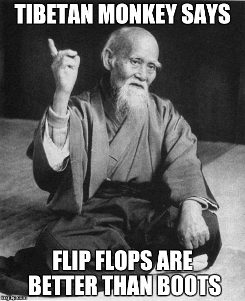Confucius say | TIBETAN MONKEY SAYS FLIP FLOPS ARE BETTER THAN BOOTS | image tagged in confucius say | made w/ Imgflip meme maker
