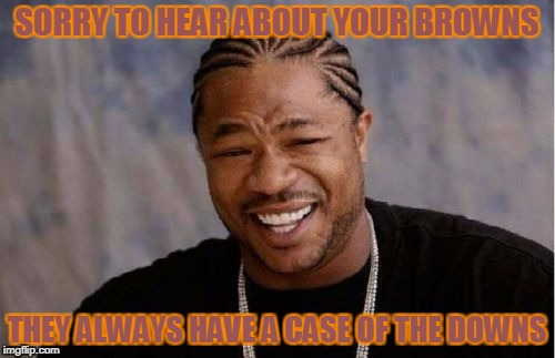 Yo Dawg Heard You Meme | SORRY TO HEAR ABOUT YOUR BROWNS THEY ALWAYS HAVE A CASE OF THE DOWNS | image tagged in memes,yo dawg heard you | made w/ Imgflip meme maker
