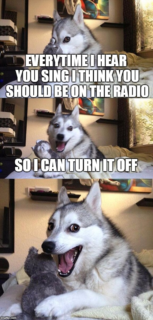 Bad Pun Dog Meme | EVERYTIME I HEAR YOU SING I THINK YOU SHOULD BE ON THE RADIO SO I CAN TURN IT OFF | image tagged in memes,bad pun dog | made w/ Imgflip meme maker