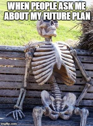 Waiting Skeleton Meme | WHEN PEOPLE ASK ME ABOUT MY FUTURE PLAN | image tagged in memes,waiting skeleton | made w/ Imgflip meme maker