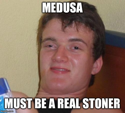 10 Guy Meme | MEDUSA MUST BE A REAL STONER | image tagged in memes,10 guy | made w/ Imgflip meme maker