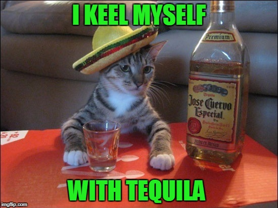 I KEEL MYSELF WITH TEQUILA | made w/ Imgflip meme maker