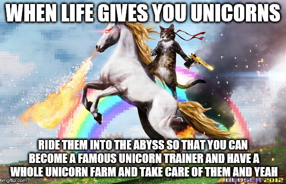 WHEN LIFE GIVES YOU UNICORNS RIDE THEM INTO THE ABYSS SO THAT YOU CAN BECOME A FAMOUS UNICORN TRAINER AND HAVE A WHOLE UNICORN FARM AND TAKE | image tagged in cat unicorn | made w/ Imgflip meme maker