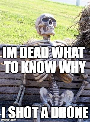 Waiting Skeleton Meme | IM DEAD WHAT TO KNOW WHY I SHOT A DRONE | image tagged in memes,waiting skeleton | made w/ Imgflip meme maker