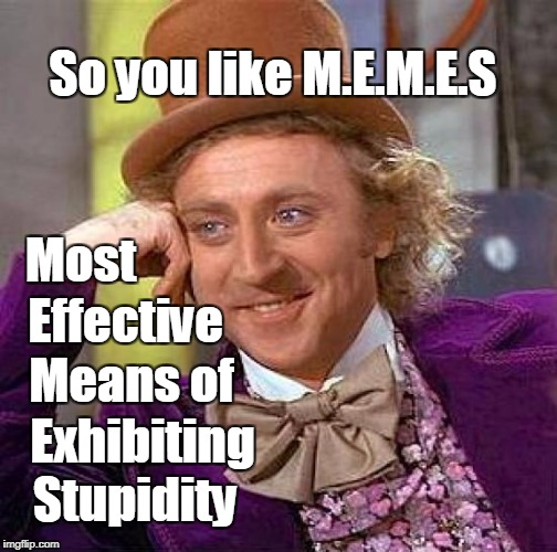Creepy Condescending Wonka Meme | Most Stupidity Effective Means of Exhibiting So you like M.E.M.E.S | image tagged in memes,creepy condescending wonka | made w/ Imgflip meme maker