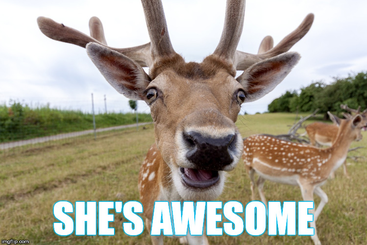 SHE'S AWESOME | made w/ Imgflip meme maker