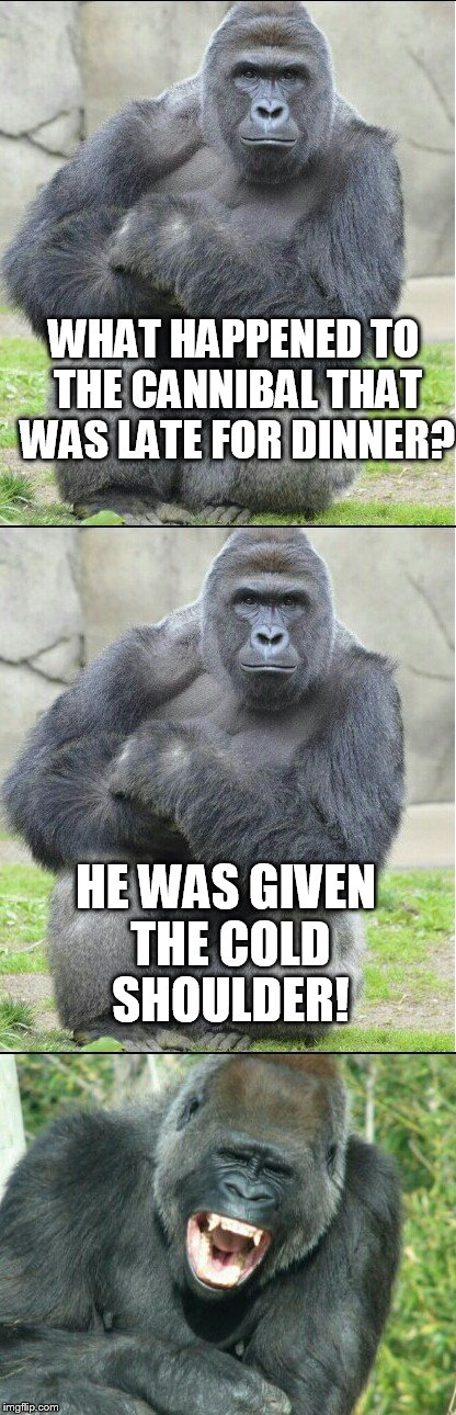 Bad Dad Joke | WHAT HAPPENED TO THE CANNIBAL THAT WAS LATE FOR DINNER? HE WAS GIVEN THE COLD SHOULDER! | image tagged in bad joke gorilla,dad joke,meme,gorilla,funny,hilarious | made w/ Imgflip meme maker