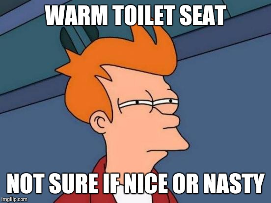 Futurama Fry Meme | WARM TOILET SEAT NOT SURE IF NICE OR NASTY | image tagged in memes,futurama fry | made w/ Imgflip meme maker
